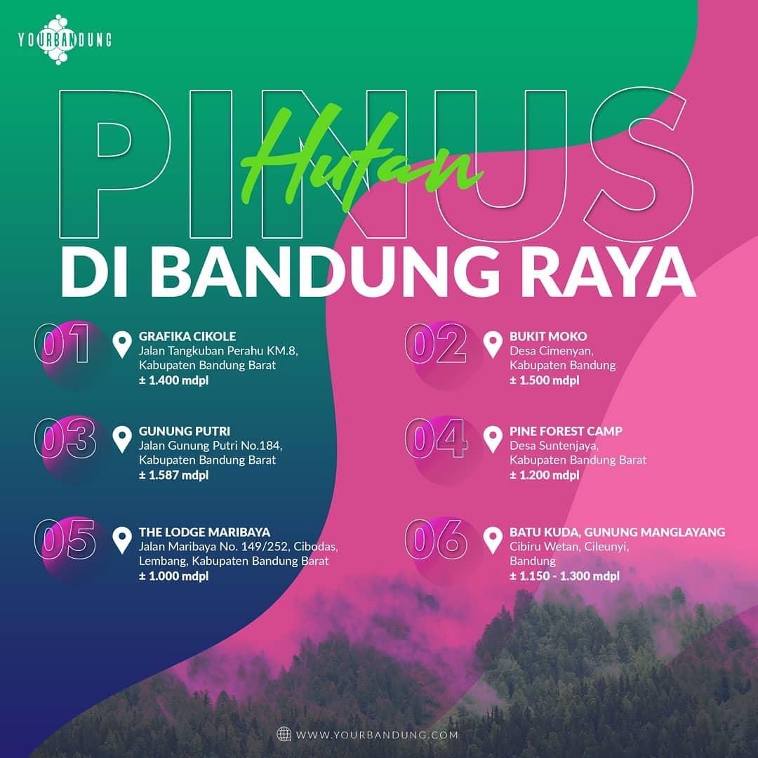 Infografis: Hutan Pinus Di Bandung Raya